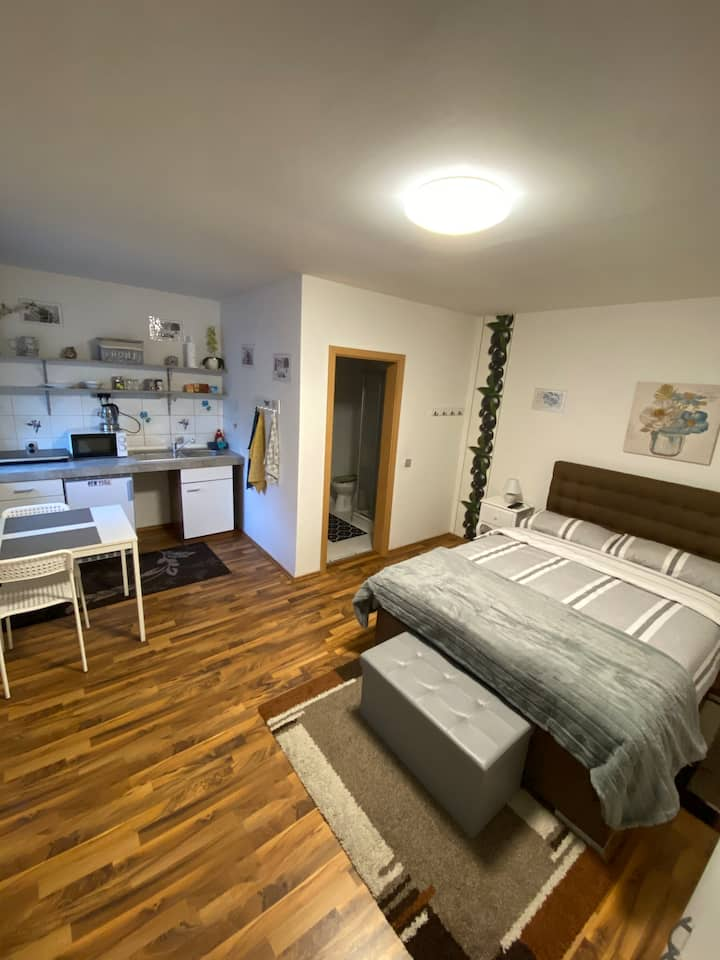 Kliniknähe 1-Zimmer Apartment Netflix Küche Bad