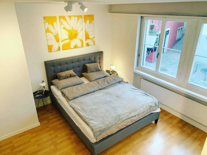Brand New Studio in the Heart of Zurich old town