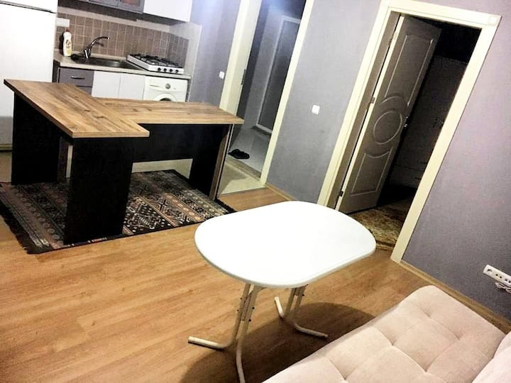 1+1 from Airport by tram to house +internet