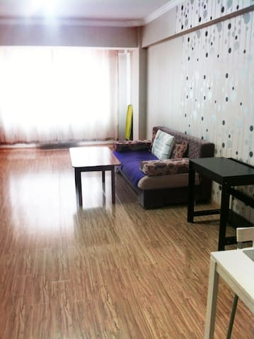 Cosy Apartment in heart of Ulaanbaatar - Ulaanbaatar - アパート