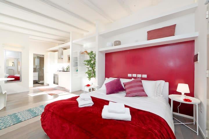 Trastevere明亮迷人的一室公寓