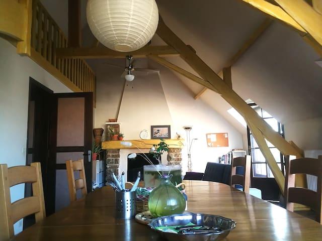 Salle à manger et Salon avec 1 ventilateur + 1 table à manger + 1 canapé-lit + 1 Télévision + 1 Cheminée + 1 Bibliothèque