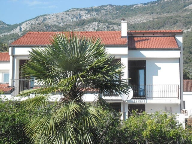 Family apartments with a garden near the sea - Petrovac - Apartment