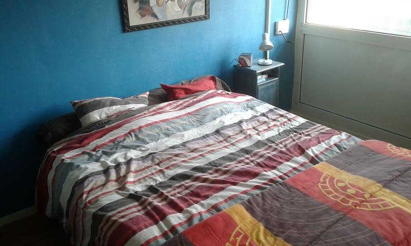 Chambre spacieuse dans appartement - Le Mans - Apartment