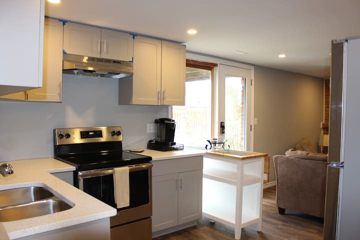 Walk-Out Renovated Basement With Quartz Countertop