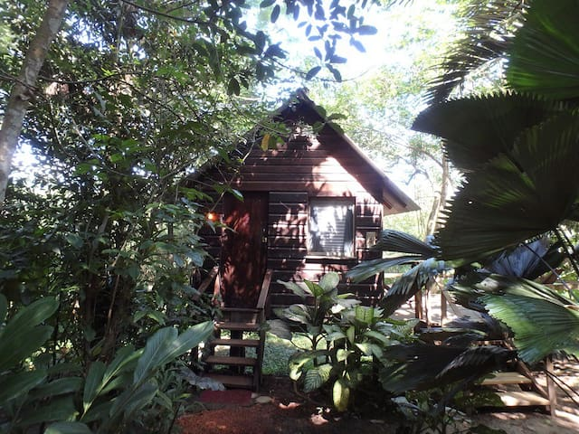 Parrot Nest Treehouse Cabana - San Ignacio - Cabane dans les arbres