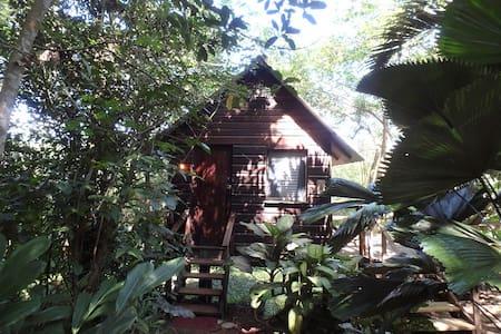 Parrot Nest Treehouse Cabana - San Ignacio - Rumah atas pokok
