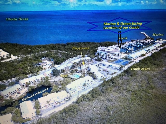 Popular Key Largo 1350 sf Lux Oceanfront 2+2 Condo