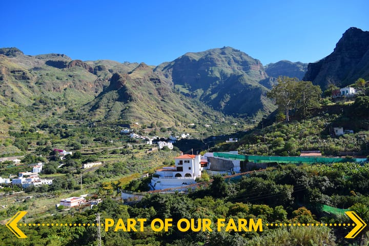 Holiday Rental Home Stunning Views Valle de Agaete