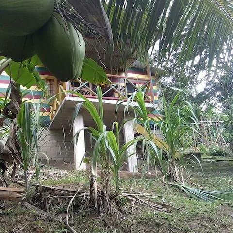 PORTLAND HOTSPOT - Port Antonio - Vila