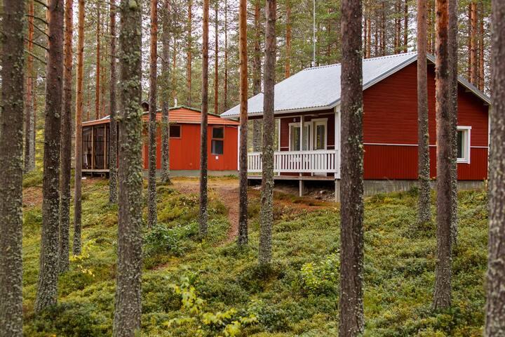 Cottage «comfort» №37 with sauna