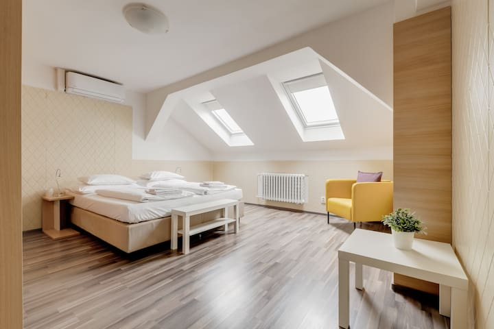 Bright Prague Castle Attic Apartment