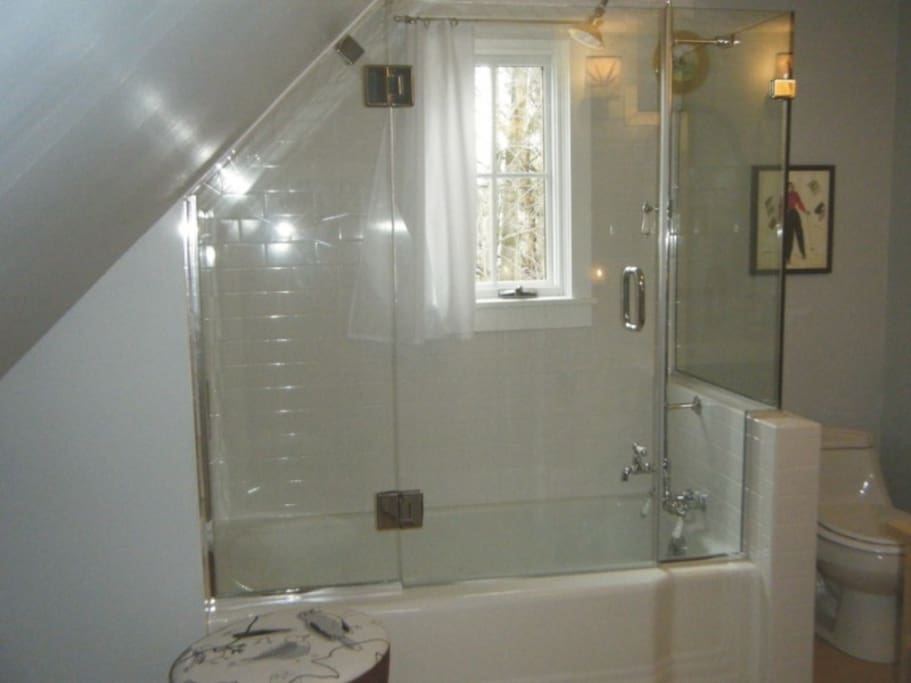 Bathroom was remodeled in 2009.