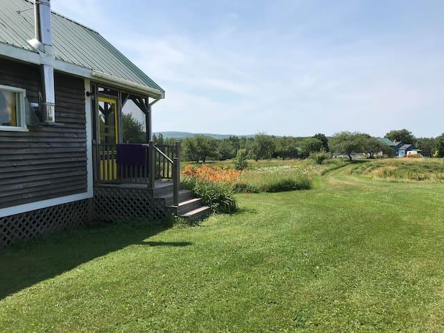 Cozy private hilltop cabin with scenic views