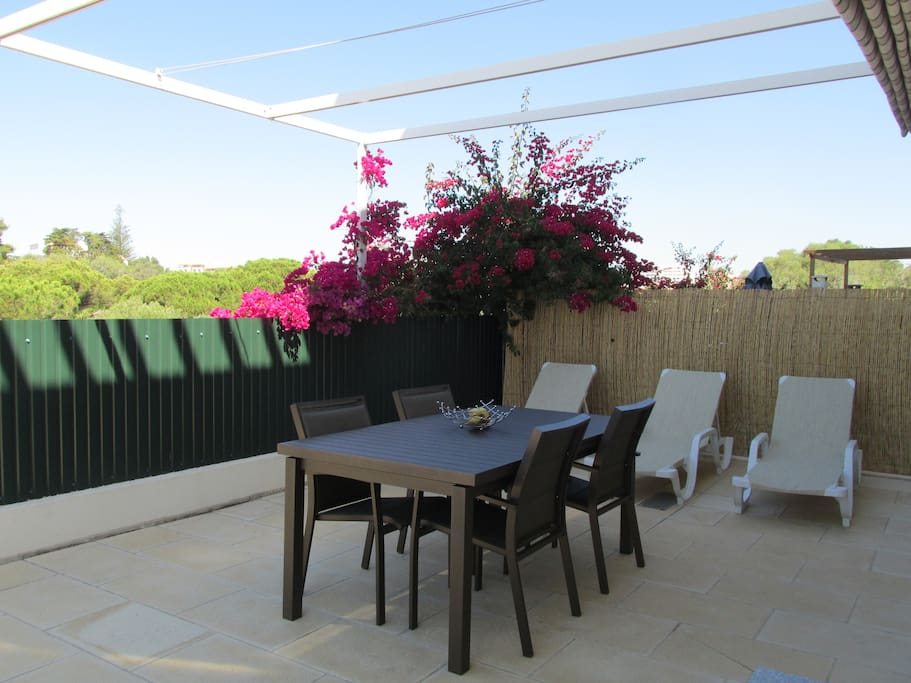private terrace with sunbeds