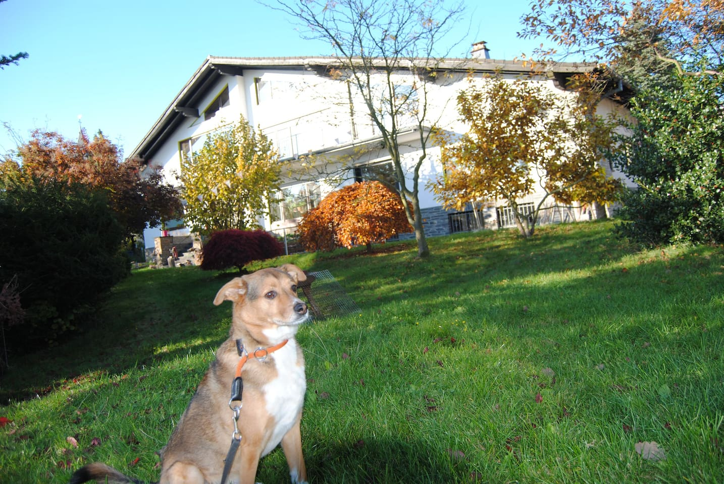 Blick auf unser Haus und die Einliegerwohnung