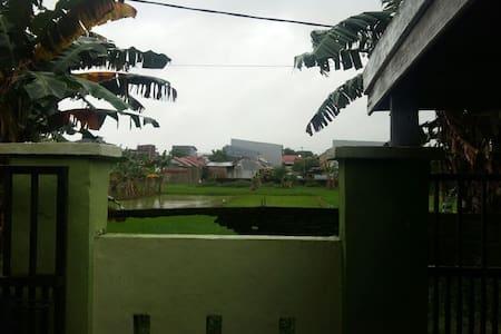 Rumah Tepi Sawah
