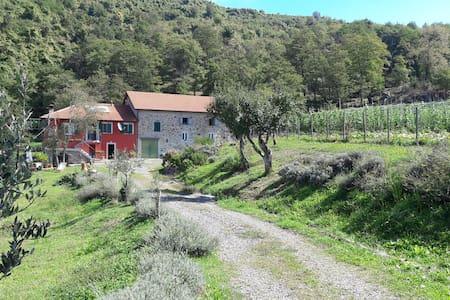 Farm house, Val di Vara near Cinque Terre