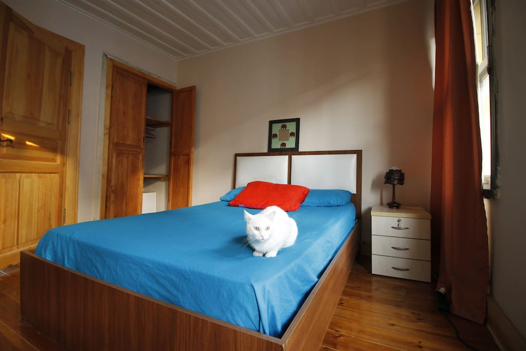 the room and our dear Lokum