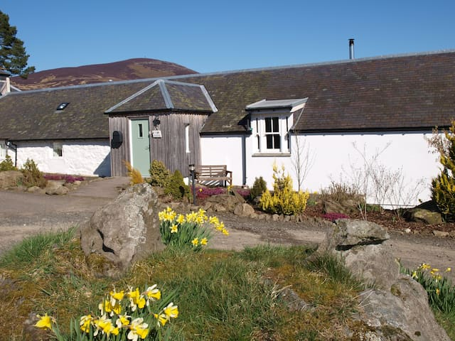 The Coo Shed @ Dalnoid Holiday Cottages, Glenshee