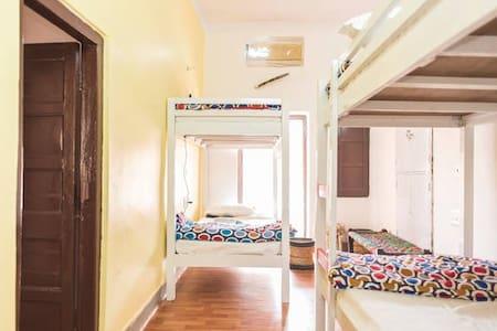 CrashPad-4 Bed Dorm Ensuite - 焦特布尔 - 住宿加早餐