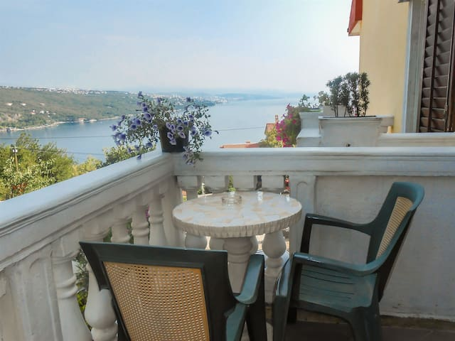 Studio Apartment, in Opatija, Balcony