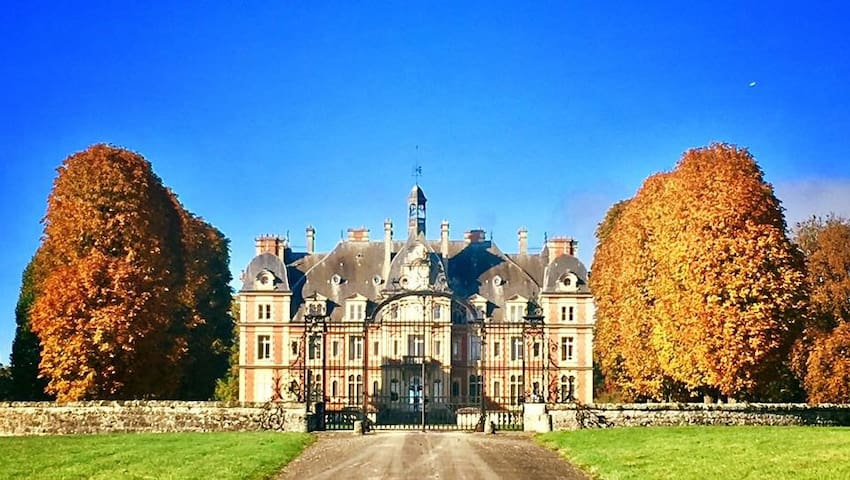 Lavish Chateau Apartment Near Paris - Ocquerre - Daire