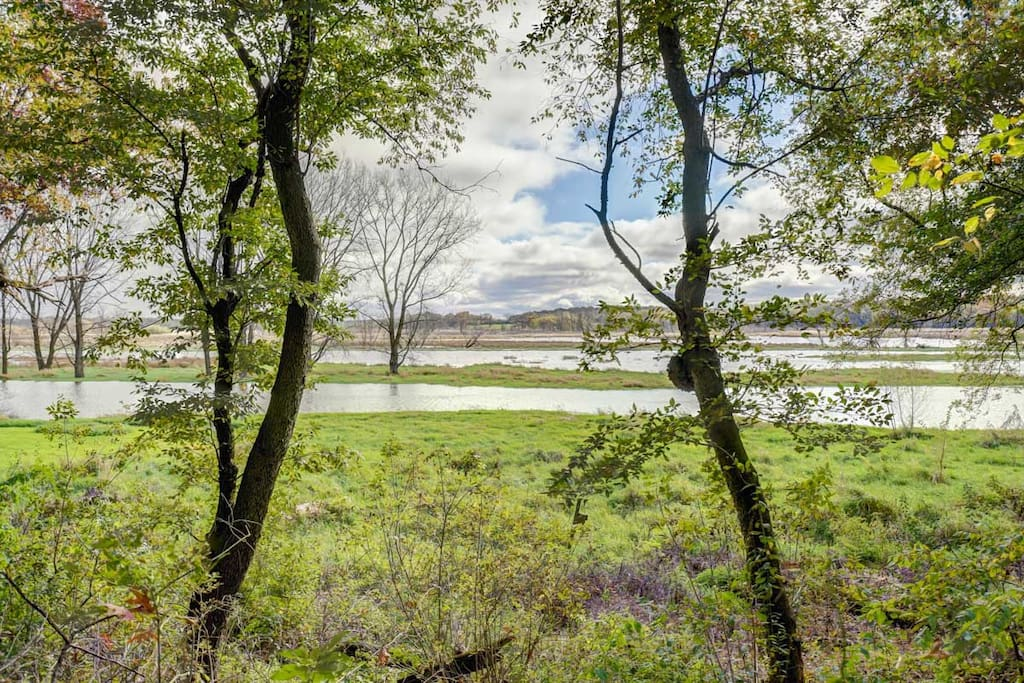 Koshkonong Creek runs in back of the property and offers beautiful views in all seasons.