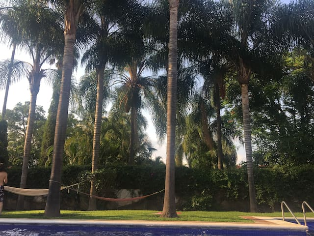 Hamacas y palmeras en zona común.