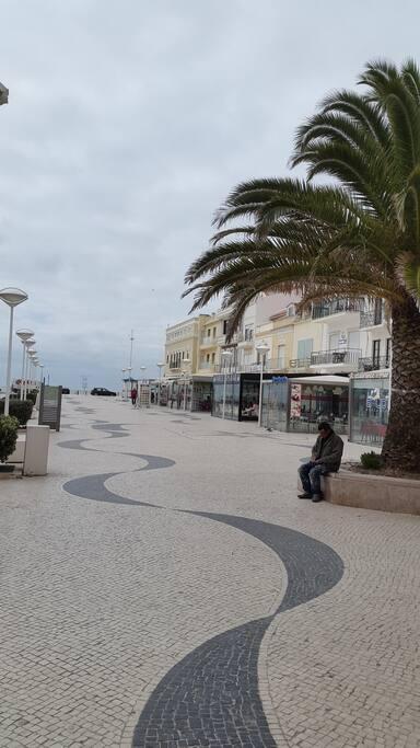l'ésplanade avec tous les commerces qui donne sur la plage