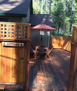 Camp Miller Cottage - Twain Harte - House