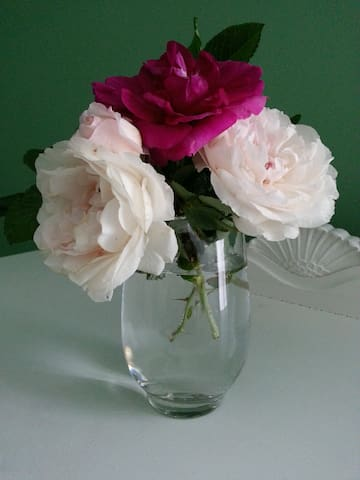Roses from the garden to scent your room.