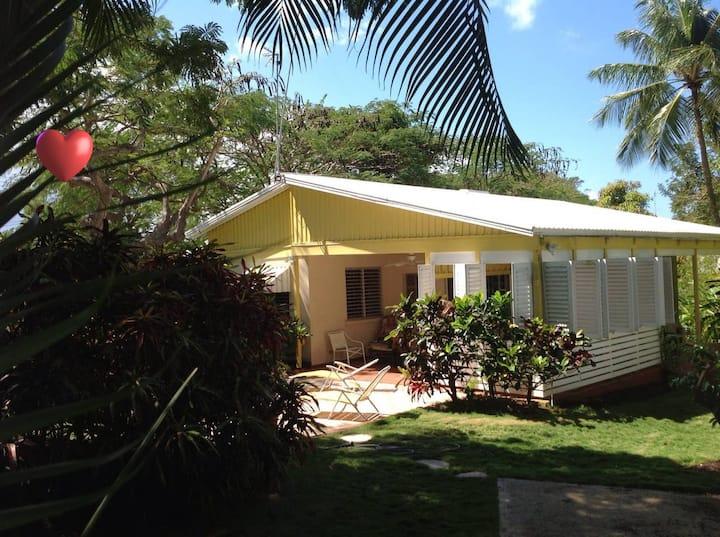Gibbs Palms 🌴 Your Barbados Oasis   🏊♀️  🌞A/C