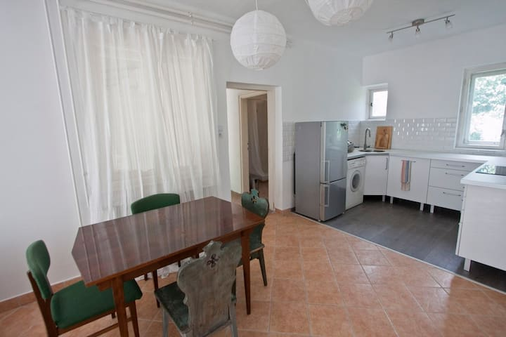 Spacious Beautiful House by Lake Balaton - Balatonfenyves - Apartemen