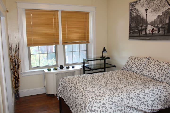 Dupont Circle comfortable and cozy 1 BR shared BA