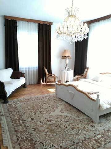 spacious luxury flat in Villa - prague 4 - Villa