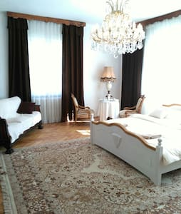 spacious luxury flat in Villa - prague 4