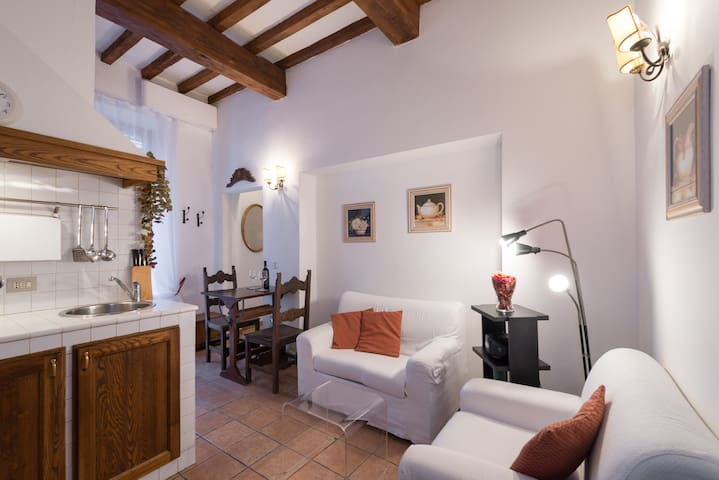 Charming apartment with terrace - Florencia - Loft