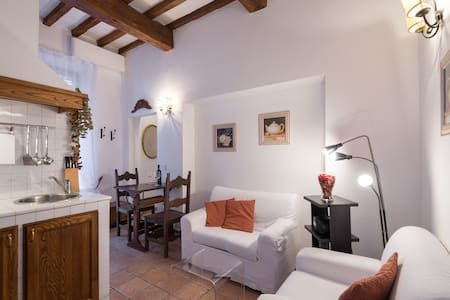 Charming apartment with terrace - Florencia