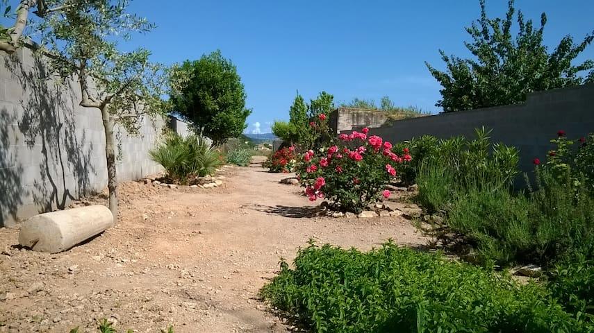 Casa rural Cal Drac catalogada con 3 espigas. - Puigdàlber - Huis