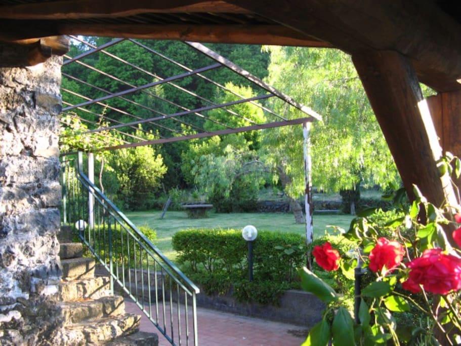Vista del giardino dal patio