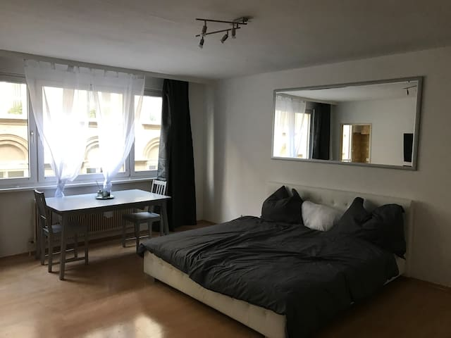 Cosy Appartment in Vienna Center (U1,62,1)