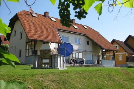 FERIENHAUS AM SCHLOSSHANG Haus A - Hohenbrugg an der Raab - House - 2
