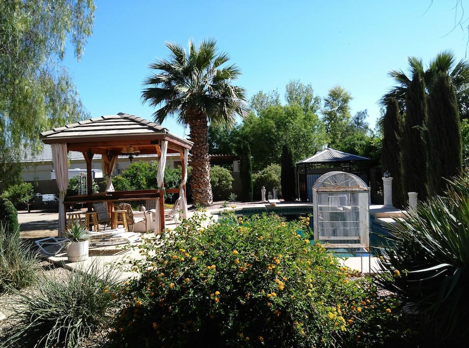 large diving pool with lush landscape and gazebo. pool is not fenced.