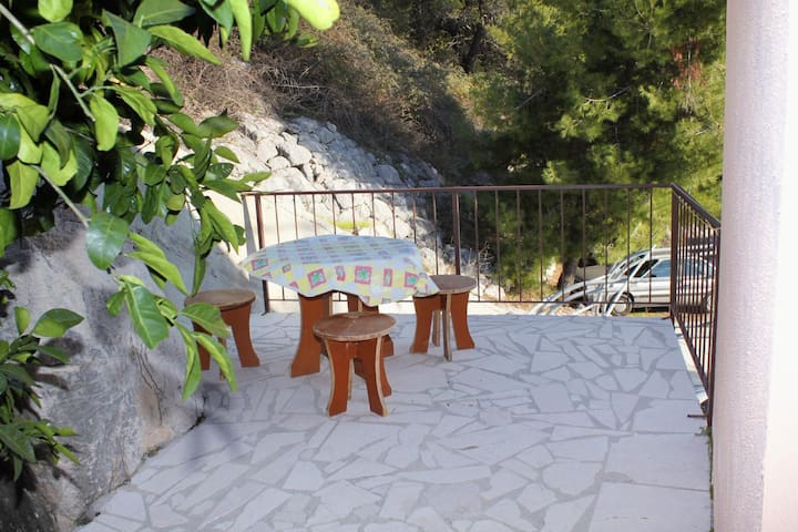 Studio flat with terrace and sea view Zavode, Omiš (AS-5252-b)