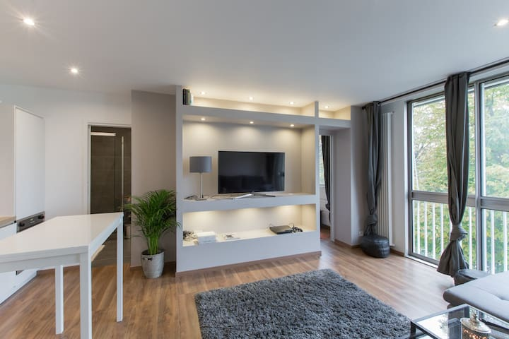 Bel appartement au cœur de Nancy - Nancy - Lägenhet