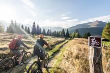 Bild aus disentis-sedrun.graubuenden.ch/de/aktivitaeten-erlebnisse/rad-mountainbike
