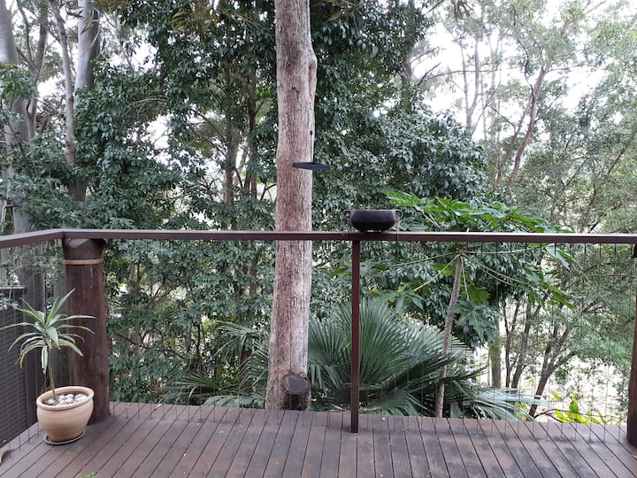 Lismore treehouse - a beautiful place to relax