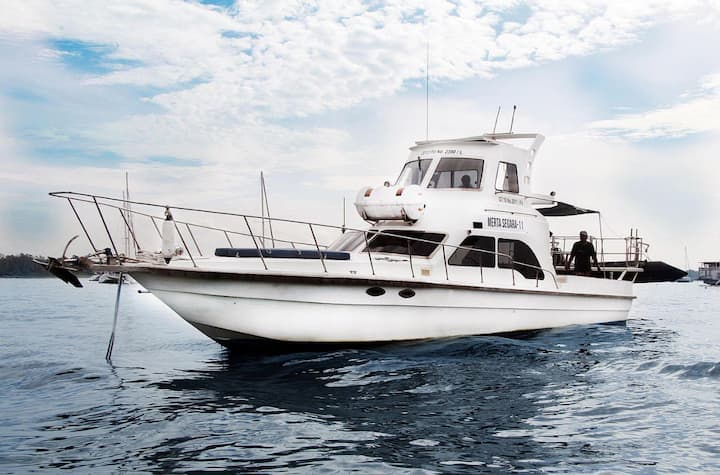 Сruise boat
