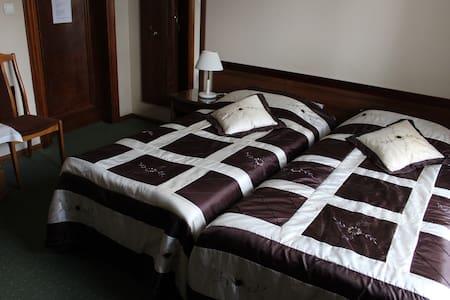 Złota Palma - Pokój Gościnny nr 1 - Lądek-Zdrój